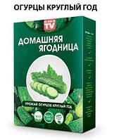 Чудо-набор для выращивания овощей и зелени дома «Сказочный огород круглый год» без ГМО (Огурцы)