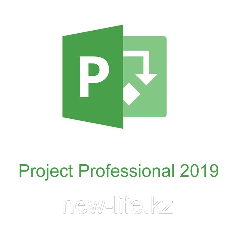 Microsoft Project 2019 Professional, key
