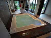 Jacuzzi Virginia Professional
