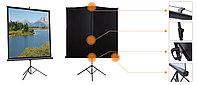 "Экран для проектора моторизированный Mr.Pixel 80"" X 80"" (2,03 X 2,03)"