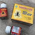 Tawon liar, ОРИГИНАЛ, капсулы для суставов (пчелка), Индонезия., фото 2