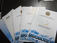 Папка с кармашком для документов А4, фото 1