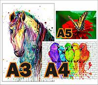 Распечатка А3 , А4, А5 формата