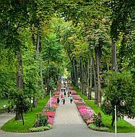 Лечение и оздоровление в Польше с компанией Навигант Травел