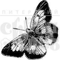 Штамп Бабочка 6