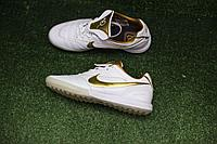 Сороконожки Tiempo Lunar Legend 7 Elite 10R (Ronaldinho) Indoor white