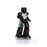 Программируемый робот (IOS , Android)