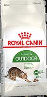 Сухой корм для кошек активных и часто бывающих на улице Royal Canin Outdoor
