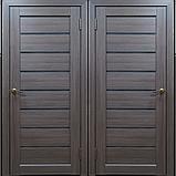 Межкомнатная дверь D-08, фото 2