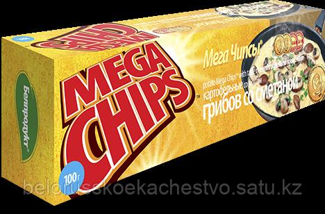 Чипсы-пластины MegaChips 100 грибы со сметаной