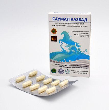 Саумал КазБад Сухое (сублимированное ) кобылье молокo №10, фото 2
