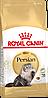 Сухой корм для кошек персидской породы Royal Canin Persian 30