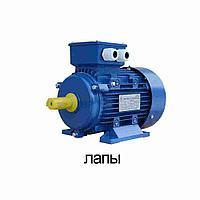 Электродвигатель трехфазный 5,5 кВт 3000 об/мин АИР100L2 IM1081 380В, фото 1