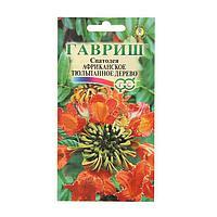 """Семена комнатных цветов, Спатодея """"Африканское тюльпанное дерево"""" 0,05 г"""