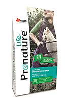 Pronature Life Fit (Пронатюр Лайф Фит) корм для котят и кошек с курицей 340 гр