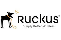 Лицензия Ruckus Wireless 909-0100-ZD00