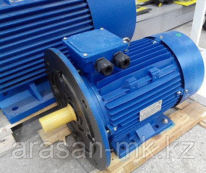 Электродвигатель лапы, комбинированный, фланец.