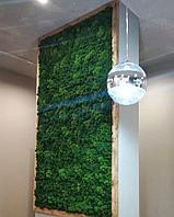 Стена из стабилизированного мха