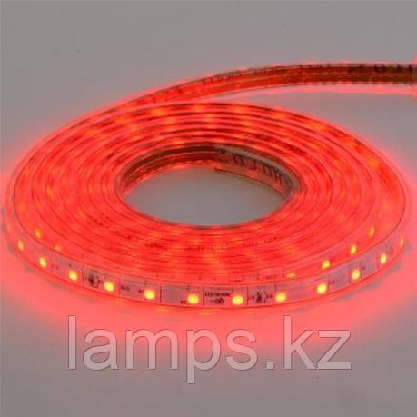 Светодиодная лента пылевлагозащищенная VOLGA 50M красный, фото 2
