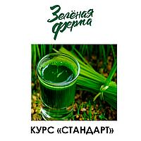 """#ВИТГРАСС - Курс """"СТАНДАРТ"""""""