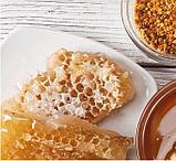 Мед натуральный цветочный «Гречишный», фото 3