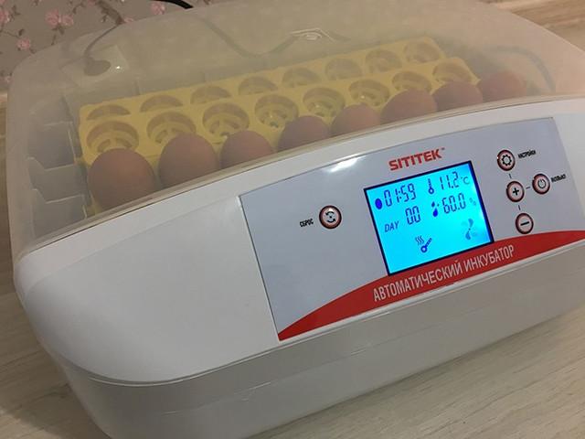 """Автоматический инкубатор для яиц """"SITITEK 32"""""""