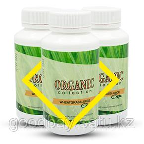 Порошок Витграсс для похудения (Wheatgrass Organic Collection), фото 2