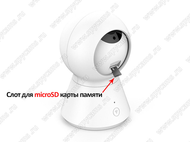 http://www.spycams.ru/slider/1000/Amazon-K2-AW2-8GS-3.jpg