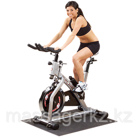 Спинбайк Best Fitness BFSB10