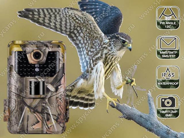 http://www.spycams.ru/slider/1000/filin-hc-900a-2.jpg