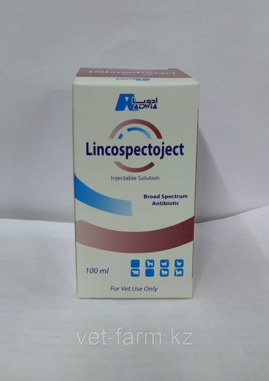 LINCOSPECTOJECT. (Injection)