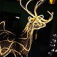 Дюралайт led, светодиодная лента, праздничное освещение, гирлянда D1R 100 метров красный, фото 4