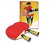 Профессиональная ракетка для настольного тенниса Double Fish 6A Series
