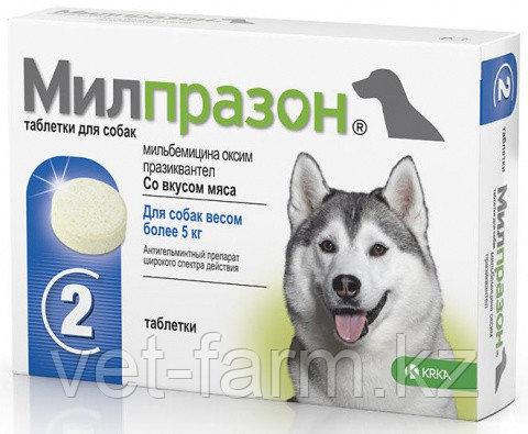 Милпразон таблетки для собак более 5 кг