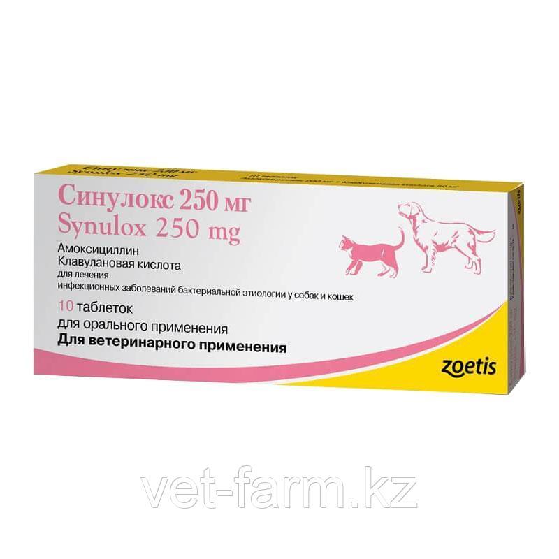 Синулокс таблетки, уп. 10 таб. по 250 мг