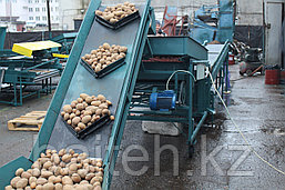 Сортировка-калибровка Картберг 620, фото 3