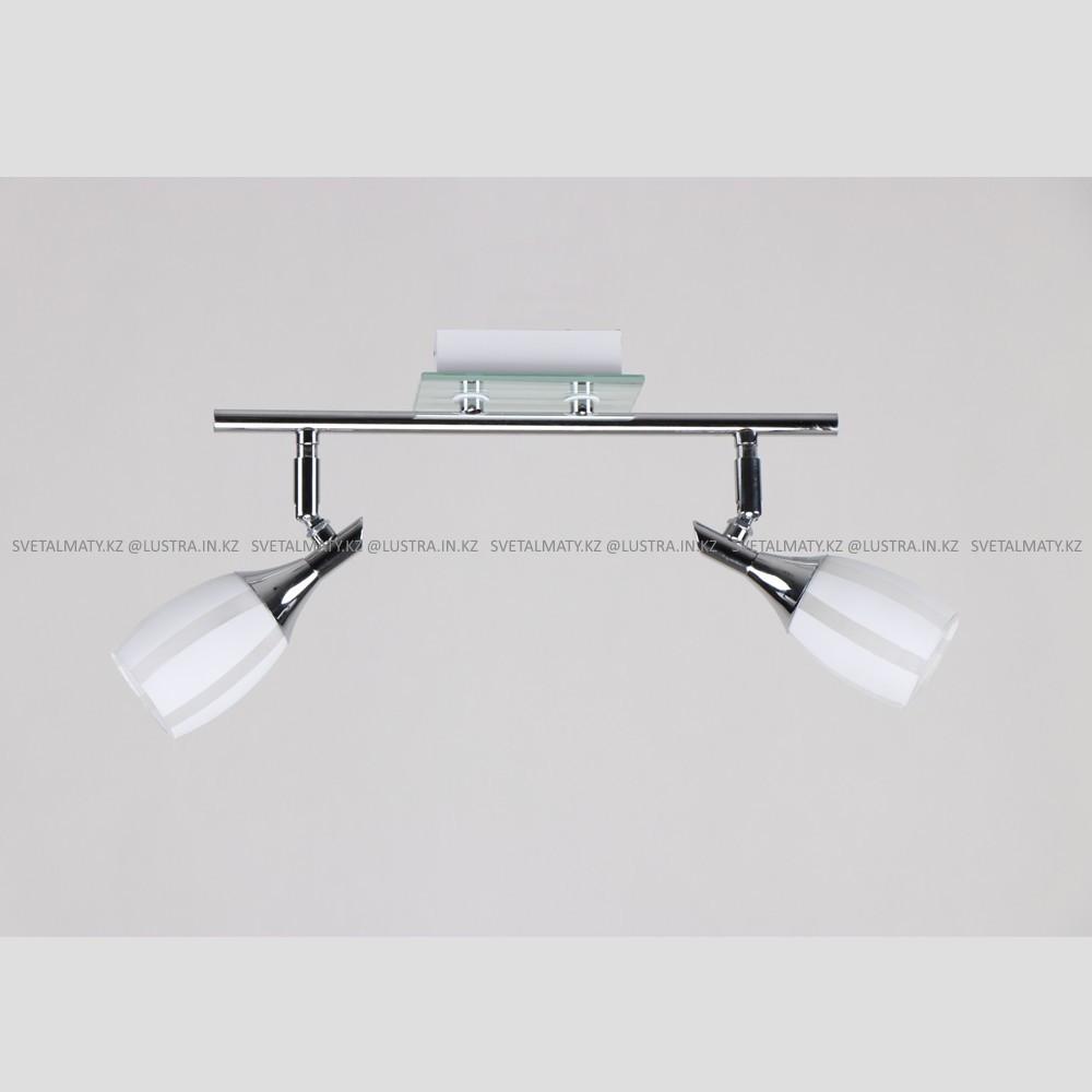 Потолочный светильник на 2 лампы в современном стиле Modern