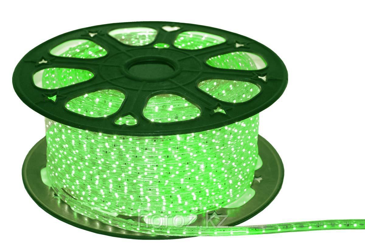 Светодиодная лента 50*50 HL-543L зеленая 220 Вольт