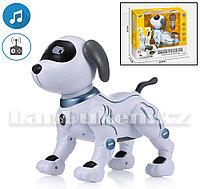 Игрушка Робот собака на батарейках танцующая музыкальная на радиоуправлении K16B
