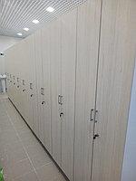 Шкаф для одежды двойной, фото 1