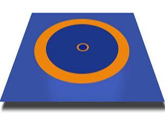 Борцовский ковер 12х12 м (с матами НПЭ 40мм) новый стандарт