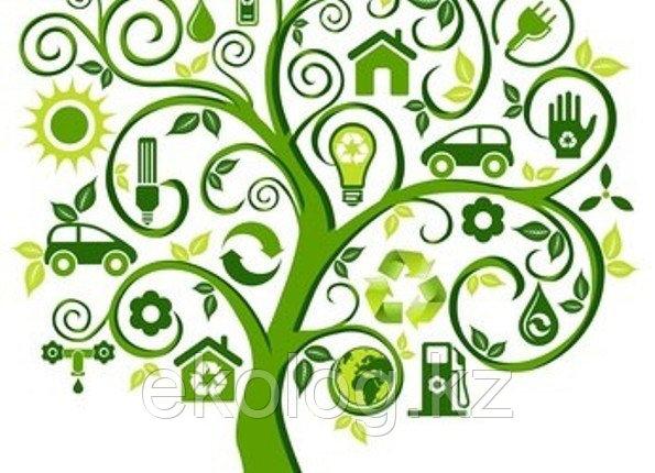 Получение Заключения государственной экологической экспертизы по проектам