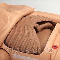 Манекен для ухода за пациентами,  Clinical Chloe S222.100 Gaumard, США, в НАЛИЧИИ, фото 8