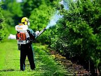 Химические средства и способы защиты растений
