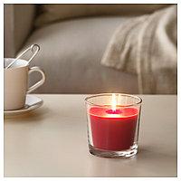 СИНЛИГ Ароматическая свеча в стакане, Красные садовые ягоды, красный