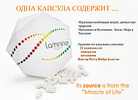 Ламинин (Laminine®) ,Оригинал, США, LifePharm Global Network