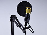 Студийный микрофон M-800-U / Конденсаторный Микрофон / Микрофон для блогеров