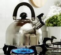 Какой чайник лучше купить – для плиты или электрический