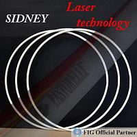 Обруч гимнастический Pastorelli Sidney FIG Logo Laser, фото 1