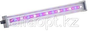 Светильник для основного освещения теплиц и досветки растений LINE-F-055-70-50 (МикропризмаБолт/скоба)
